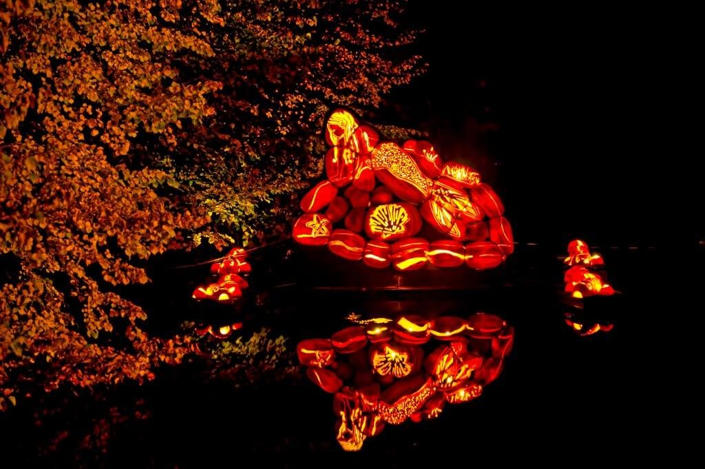 A pile of intricately carved jack-o-lanterns reflected in the water at Pumpkinferno.